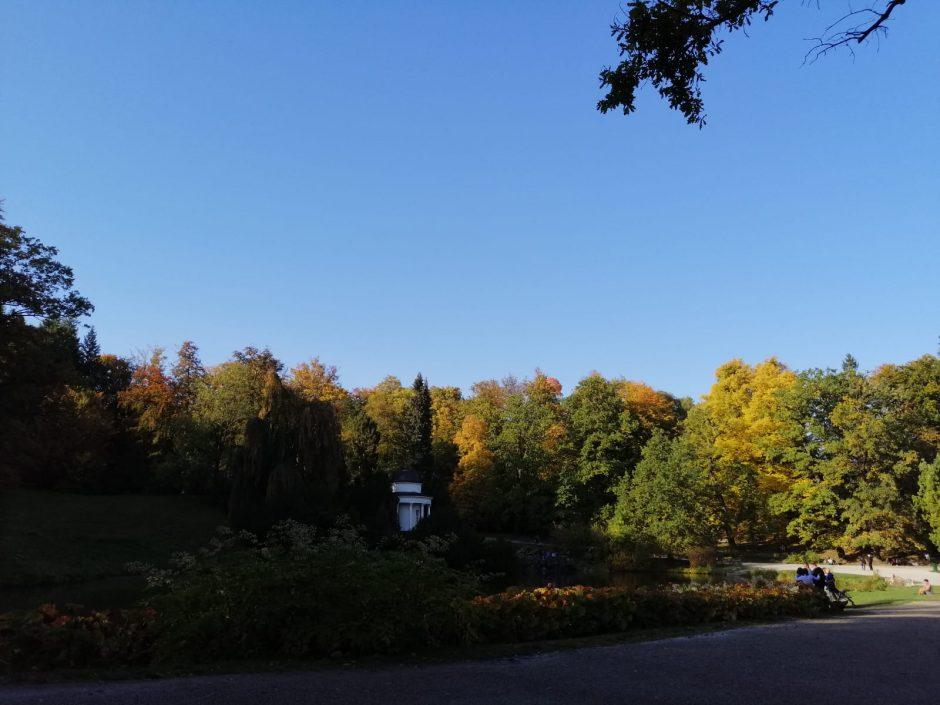 Was den Herbst besonders macht